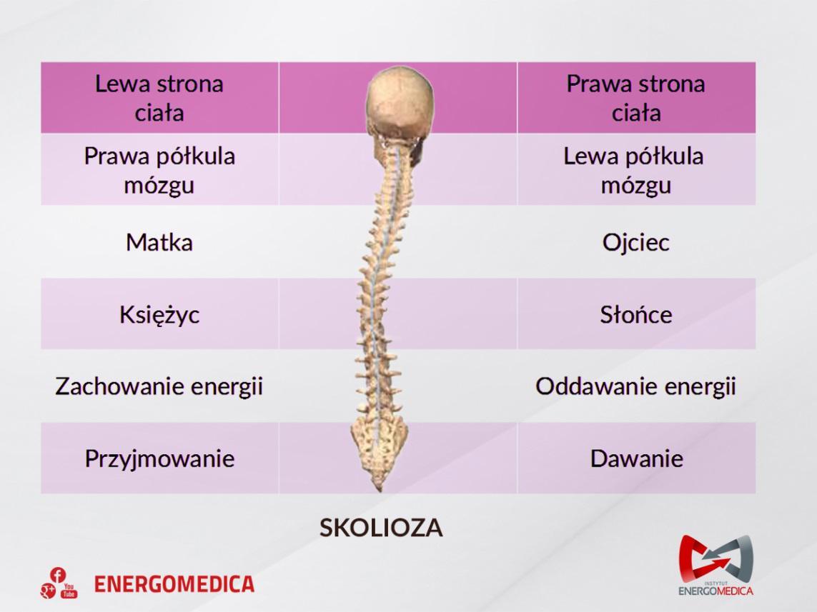 skolioza bioskan